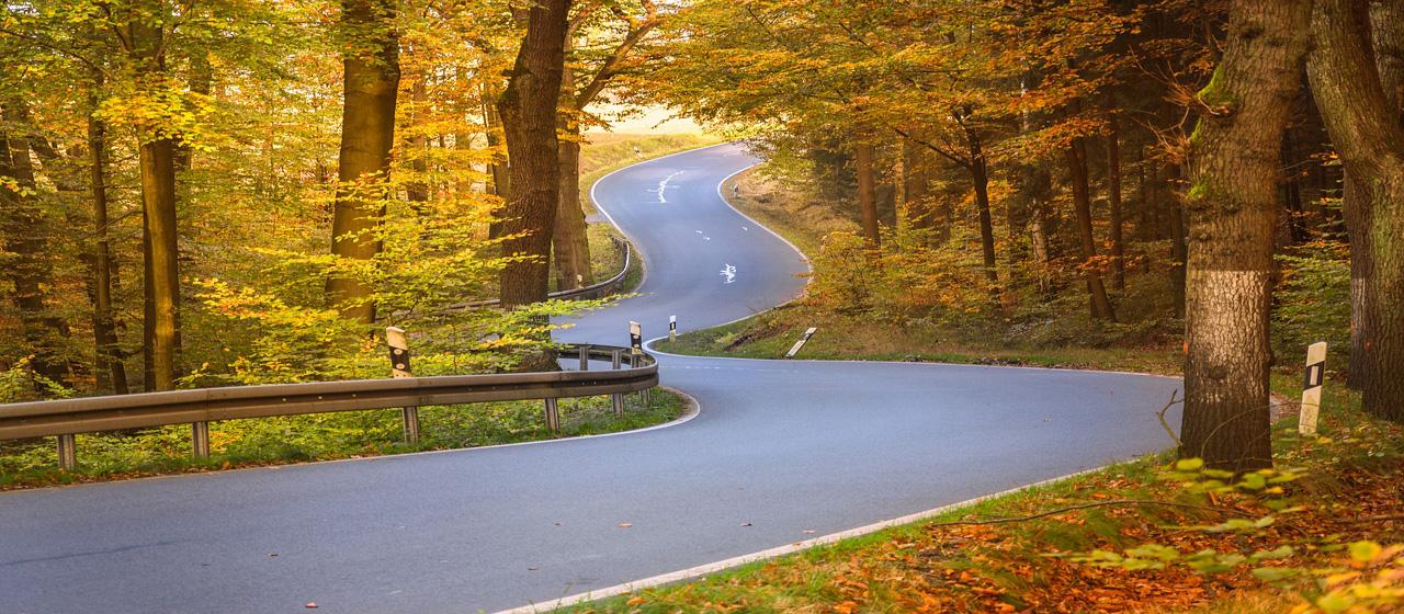 Kurven Herbstwald
