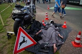 Crash Wildunfall©Verkehrswacht Nienburg